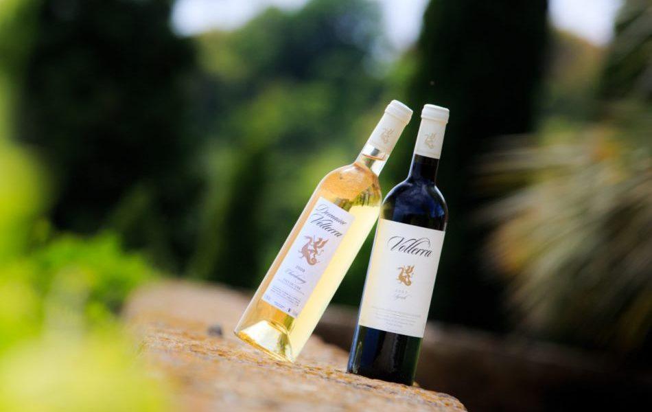 Chateau Volterra Wine Tasting
